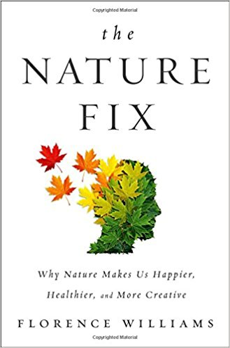 Primitive Book Nook: The Nature Fix