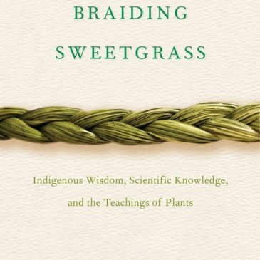 Primitive Book Nook: Braiding Sweetgrass