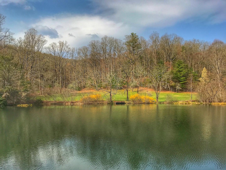 Deerfields Mills River NC